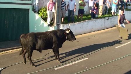 Lekker bewegen op Terceira